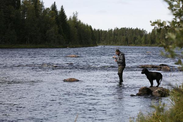 Sasse & Bisse på fiske