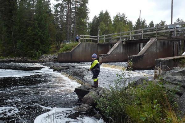 Ogsjödammen/Ogströmmen
