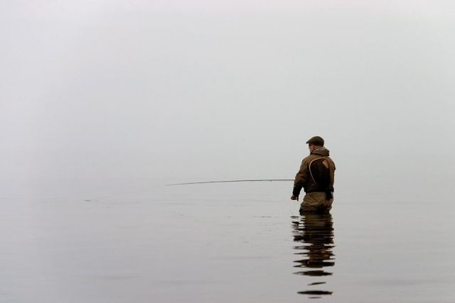 Årets flugfiskebild 2008