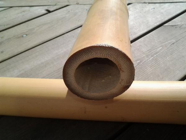 Tonkin Bambu från Stefan Löfmark