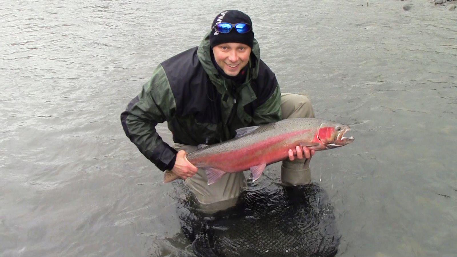 Steelhead från British Columbia