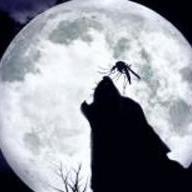Myggan som flög till månen