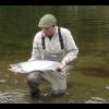 salmonfisher03